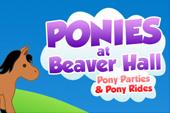 ponies-at-beaver-hall