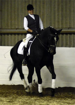 Steph Cooper Dressage Clinic @ Beaver Hall | Bradnop | England | United Kingdom