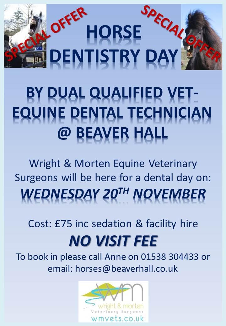 Beaver Hall Dentistry Poster