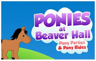 Ponies at Beaver Hall