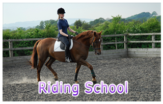 Riding School at Beaver Hall