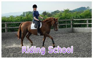 Riding School at Beaver Hall