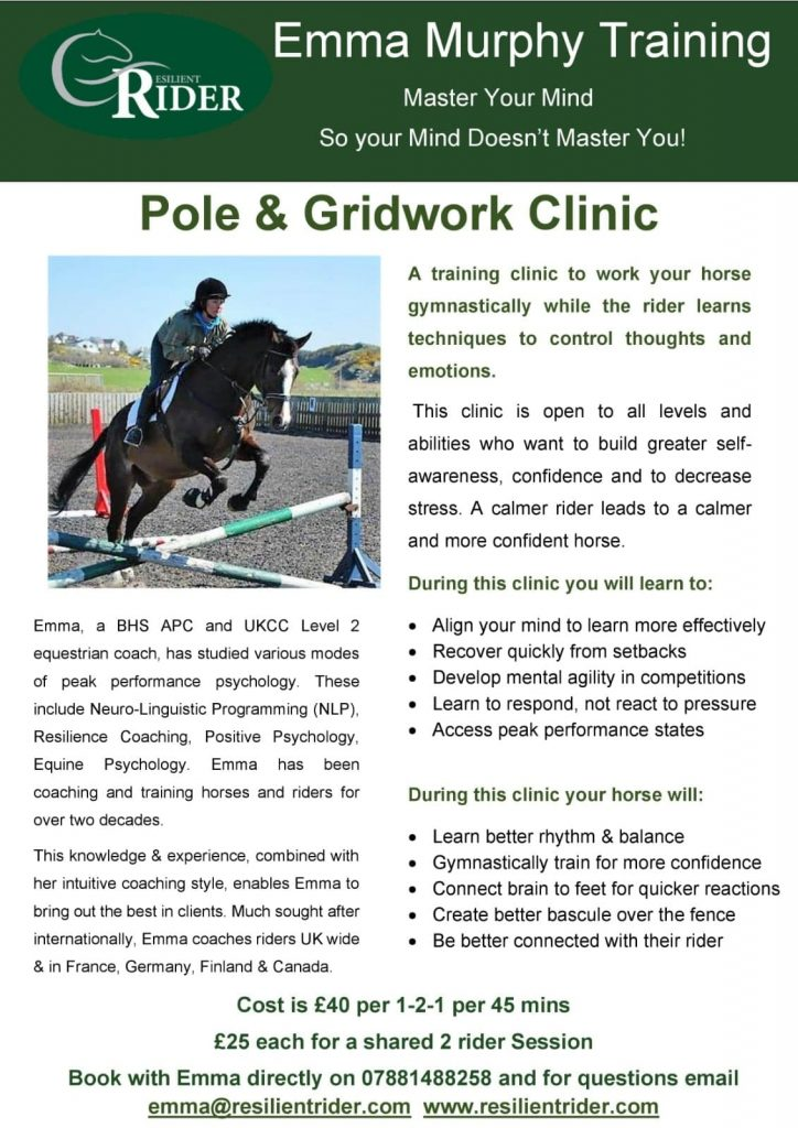 Pole & Gridwork Clinic