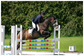 Read the results of equestrian competitions at Beaver Hall